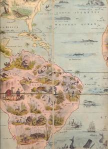 Detail from Zoological Map of the World