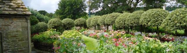 Garden at Grove Rare Books