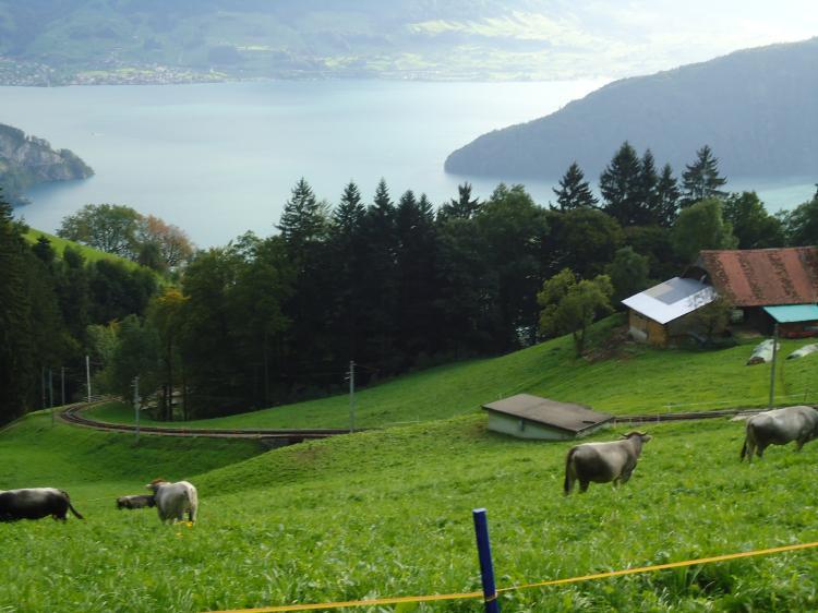 Swissness (5/6)
