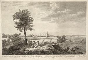 New York 1785