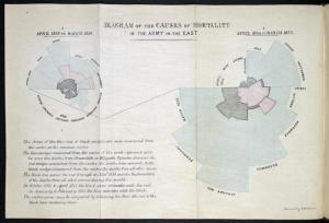 Diagram of the Causes of Mortality in the Army in the East, Florence Nightingale. London, 1858.