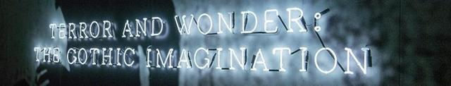Terror and Wonder