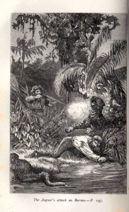 Frontispiece to Tom and the Crocodiles